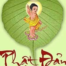 Tâm hương mùa Phật Đản