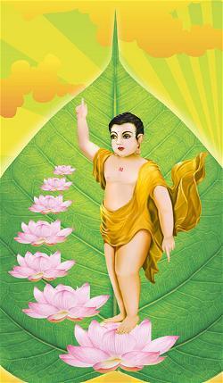 Bảy bước đi Phật đản sanh